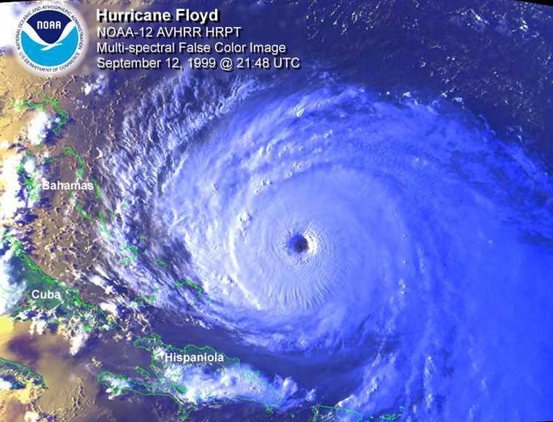 the hurricane essay